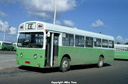 29a SMS 238 - EGN 238J as Y-0776  green