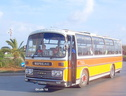 437  Ford R1014-Plaxton  ex SUO 247T
