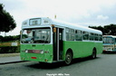 31b SMS 244 - EGN 244J as Y-0305 green detail differences