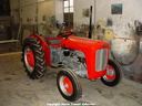 2009   e Luke s restored Massey Ferguson