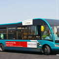 BUS 305 Opt [2919]