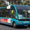 BUS 306 Opt [2920]