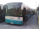 BUS 407 as FBY 705 [Arriva livery]