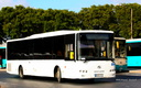 MPTS - ex Arriva Malta [ALL WHITE]